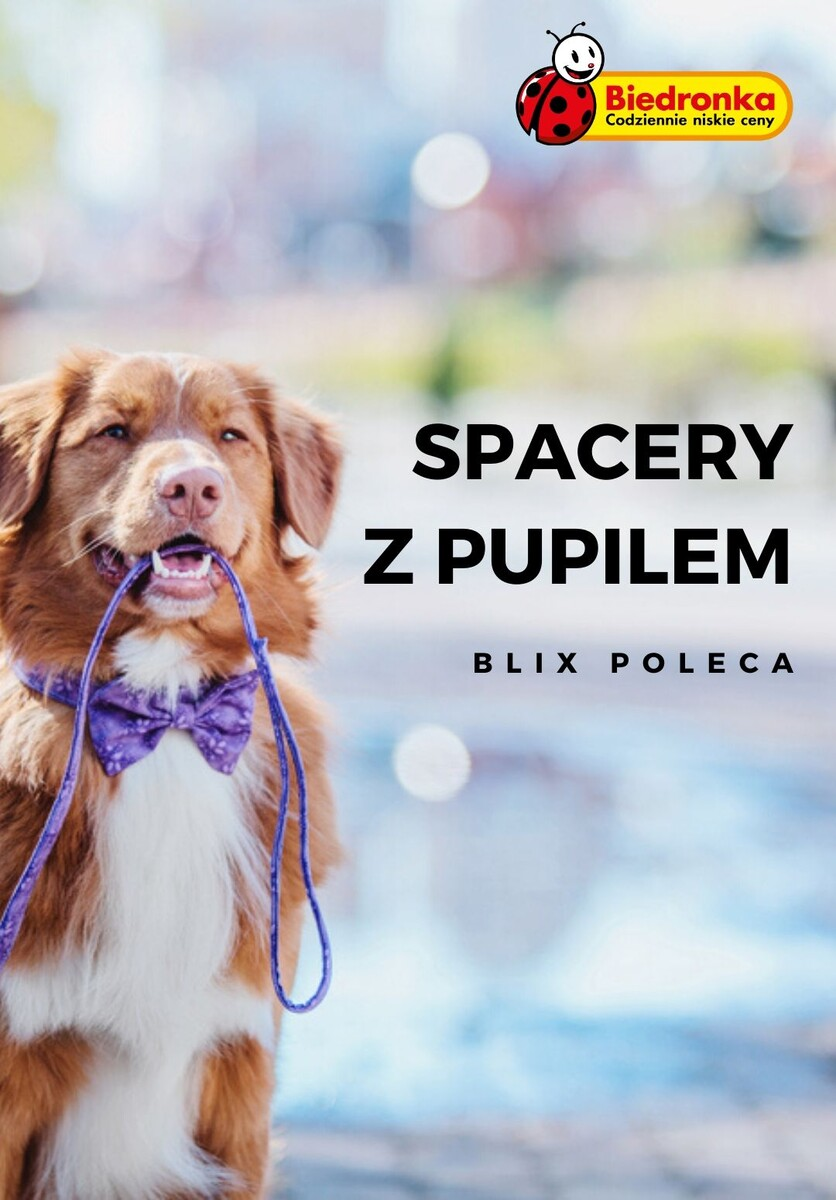 Gazetka Biedronka - Spacery z pupilem
